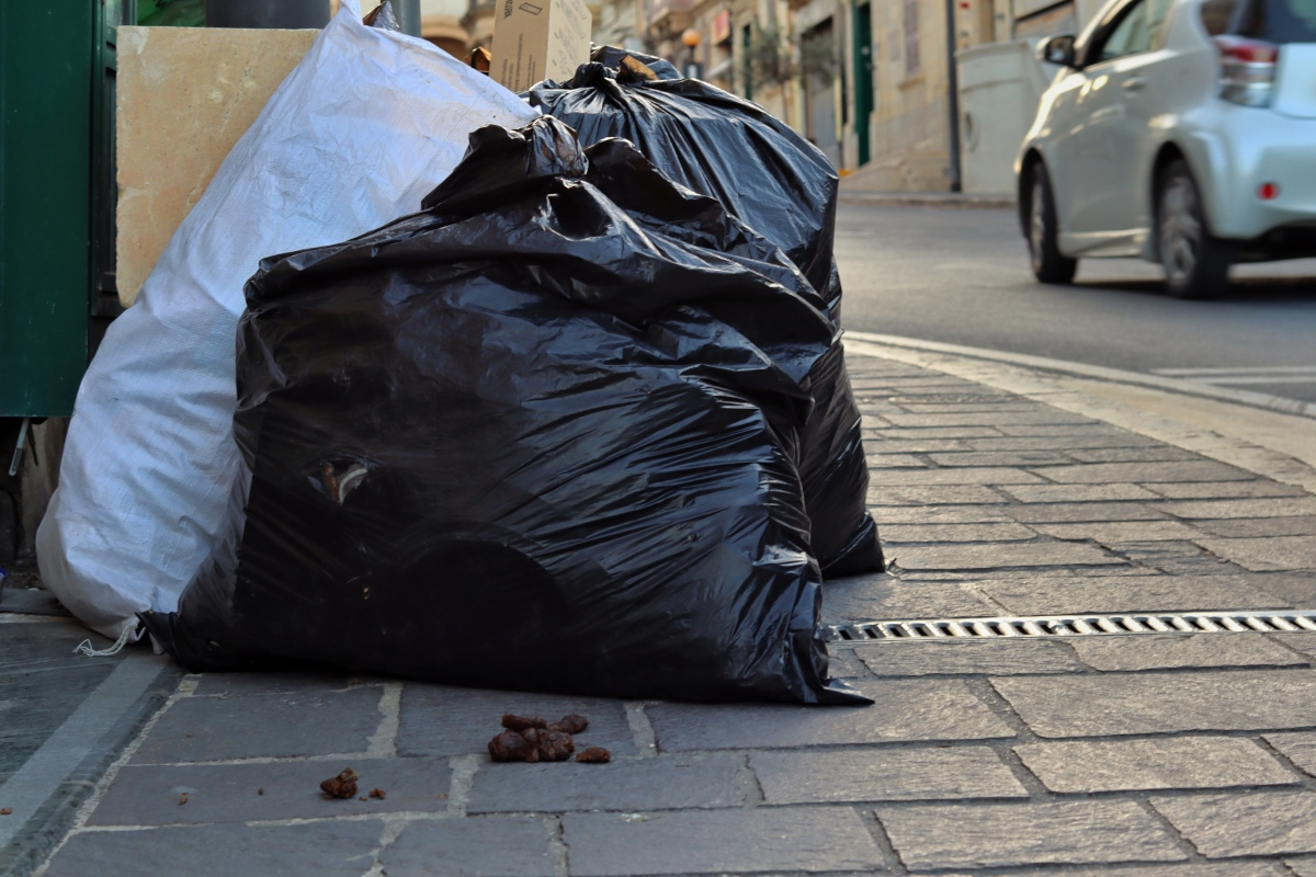 Dog stool and garbage on the streets of Victoria,Gozo