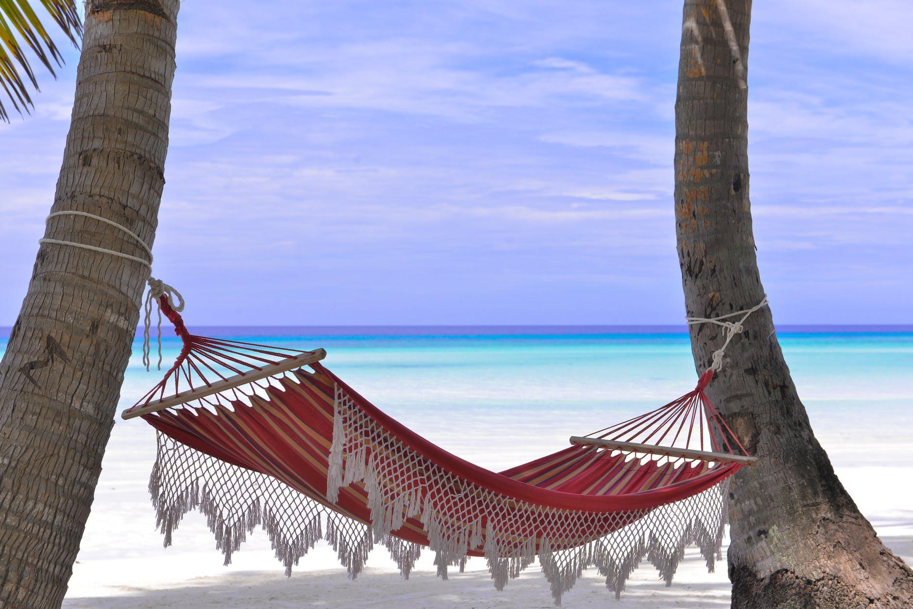 red hammock tied between two trees